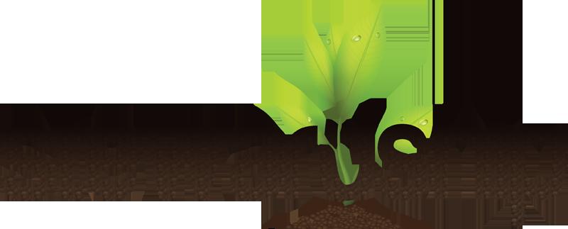 Stewardship - Google   Stewardship, Faith, Hope joy   Church Stewardship